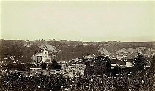 Castle and Cathedral view from Bufal mountain 1870